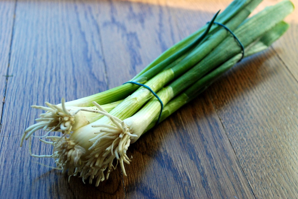 Scallions