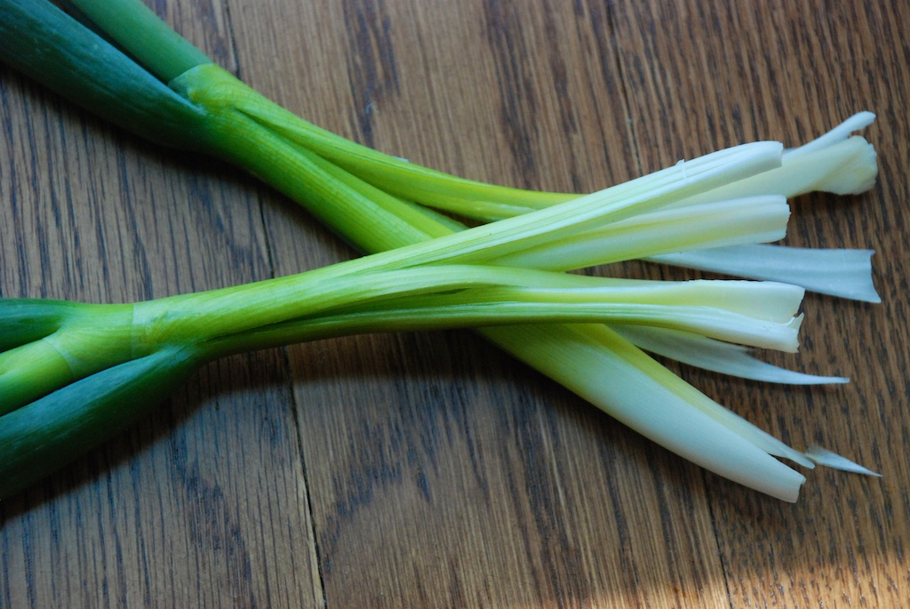 Spring onions cross sliced