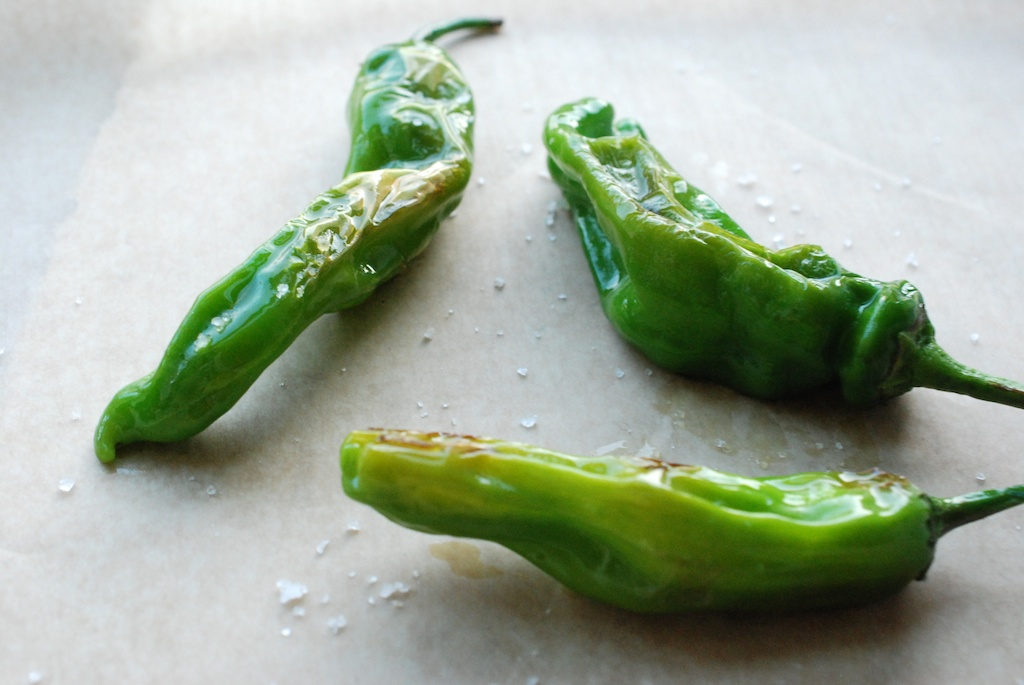 shishito peppers, side/above