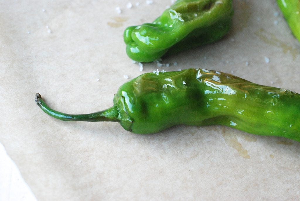 shishito peppers, up close