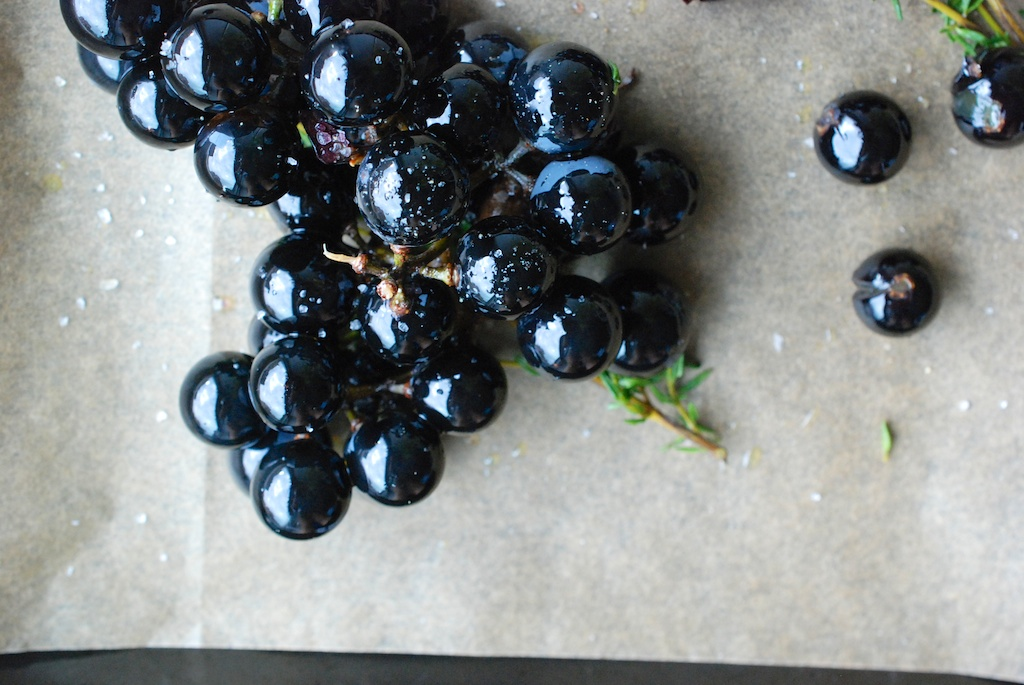 Concord grapes with oo, 1