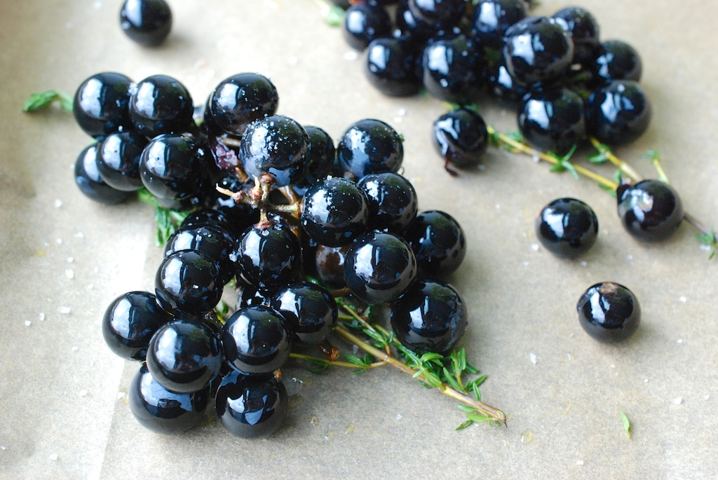 Concord grapes with oo, 2
