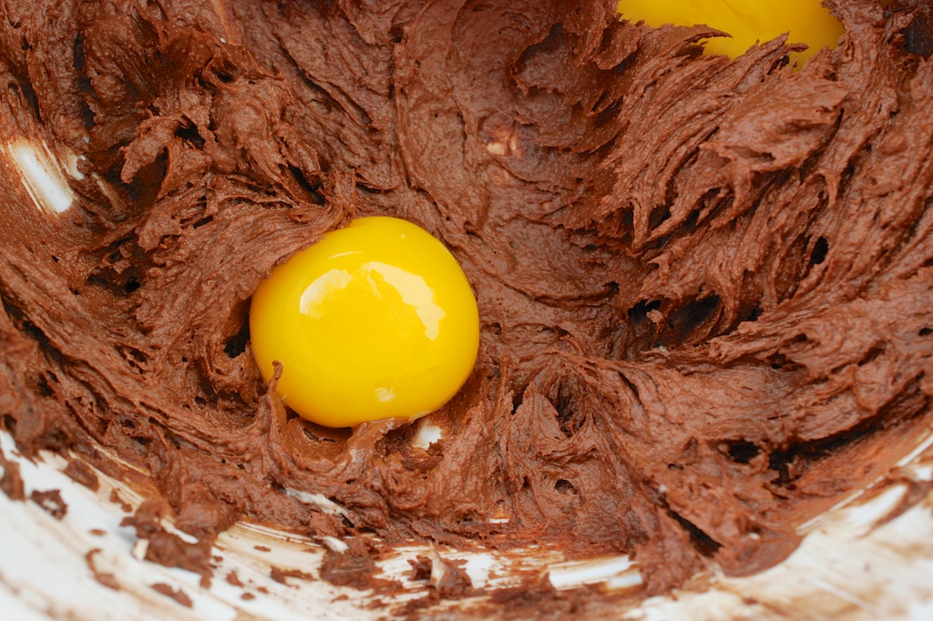 chocolate shortbread mix, with egg yolk