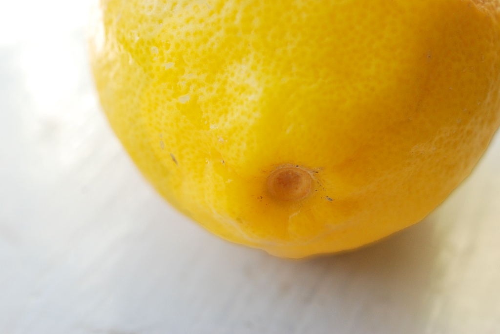 lemon end