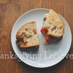 Thanksgiving Series, Part 3: Leftovers
