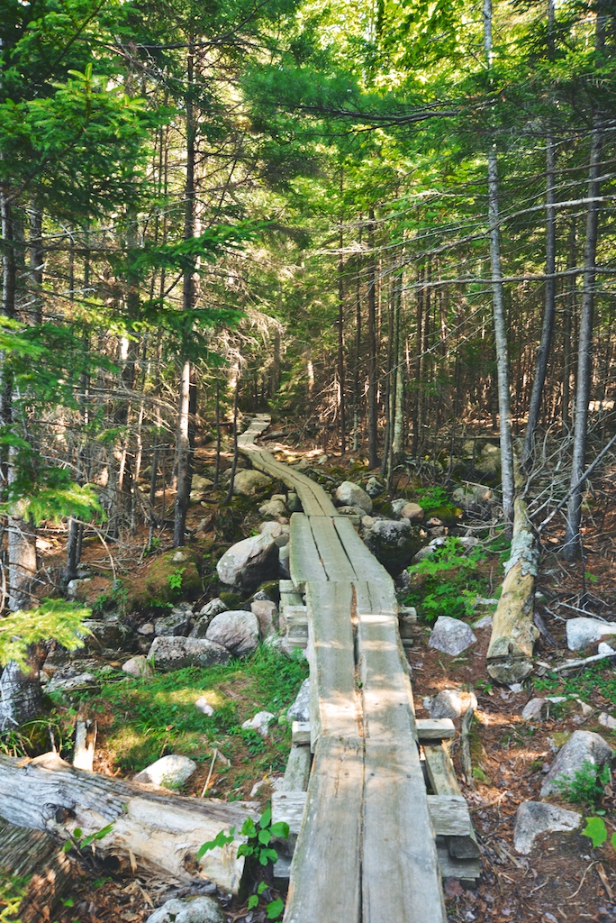 Jordan Pond Path Trail in Acadia
