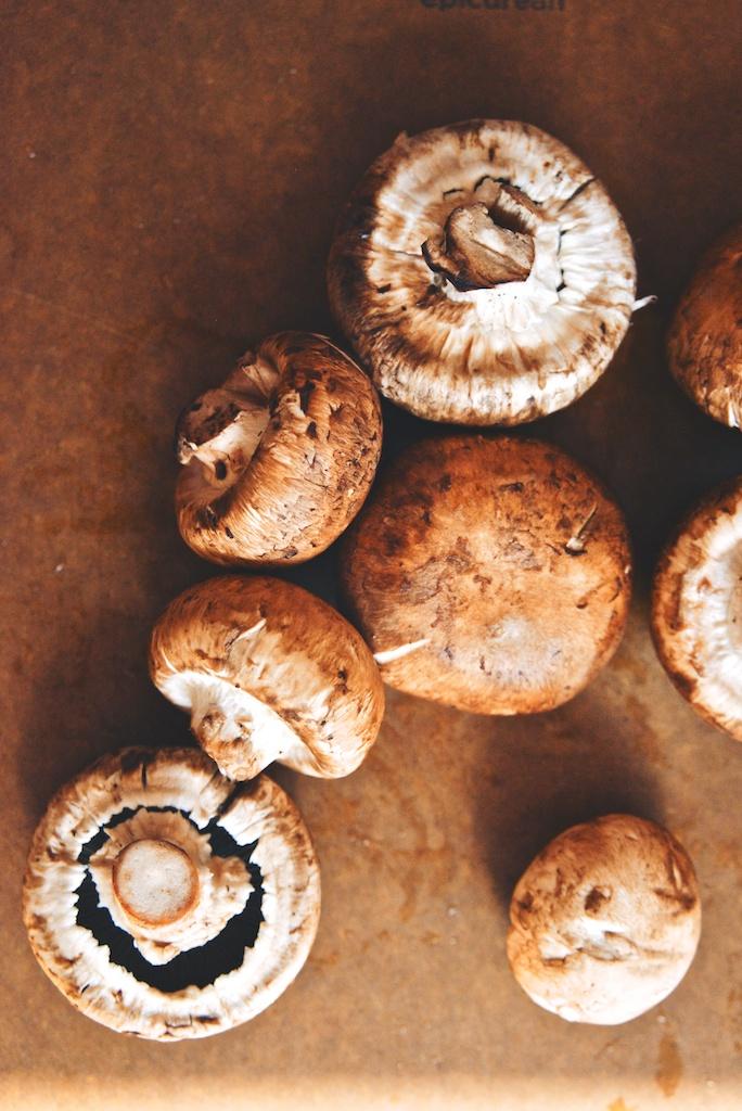 moody mushrooms