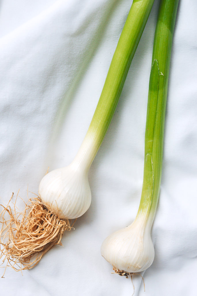 green garlic