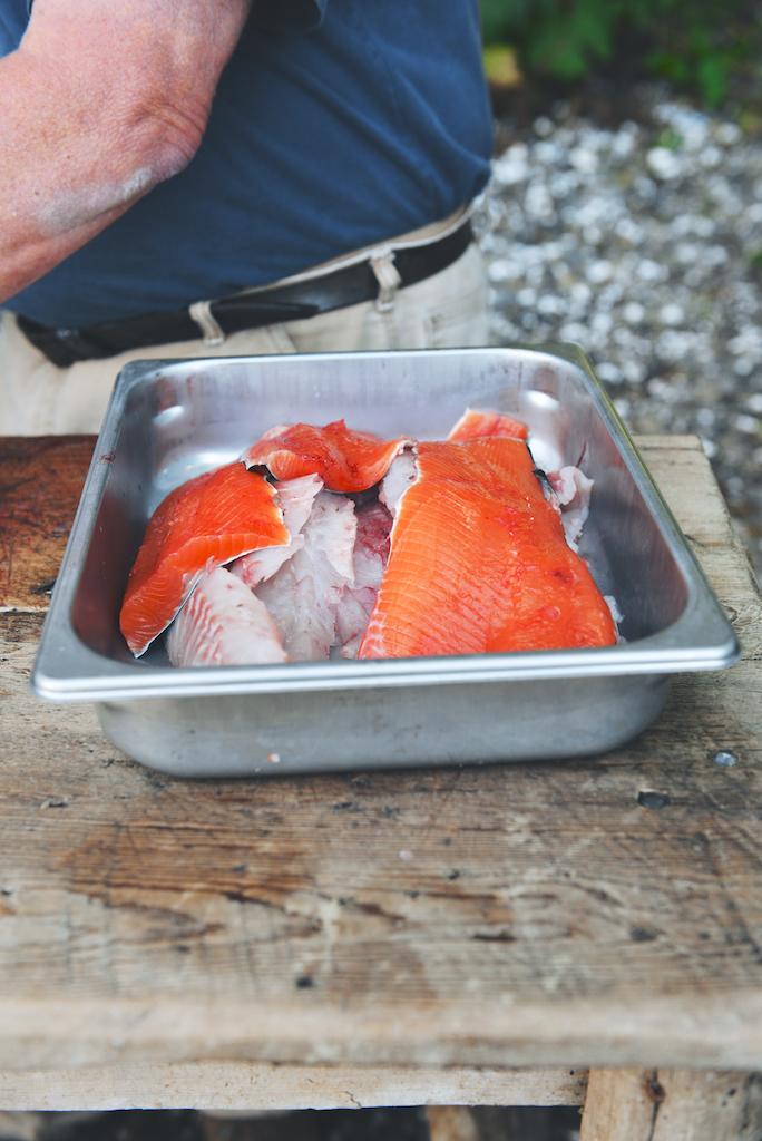 catching salmon, rockfish, and halibut in Alaska