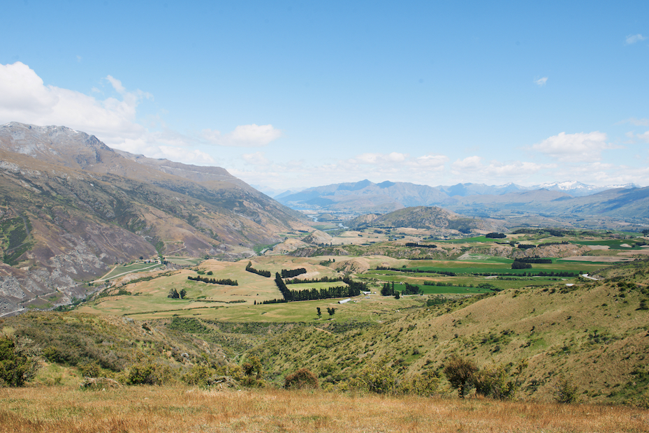 wine country near Queenstown